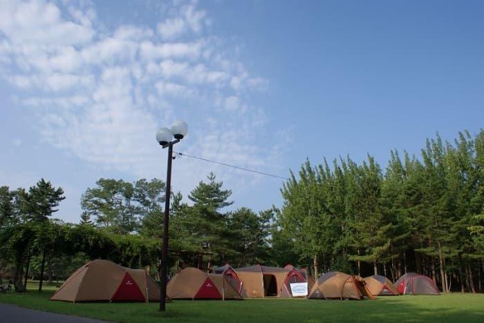 宮城県_無料_宮城県松島自然の家_キャンプ場