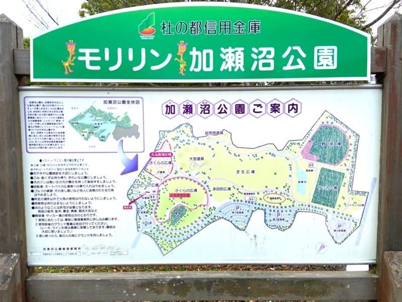 宮城県加瀬沼公園の案内