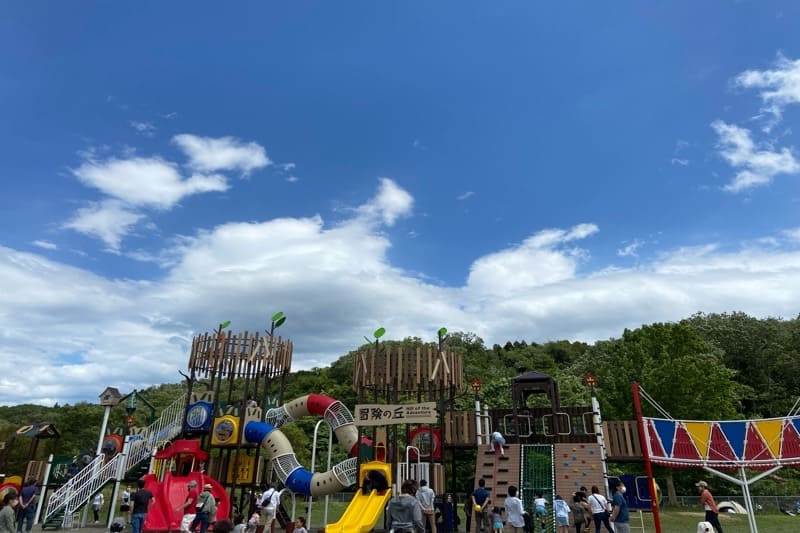 宮城県加瀬沼公園の子供用新型遊具