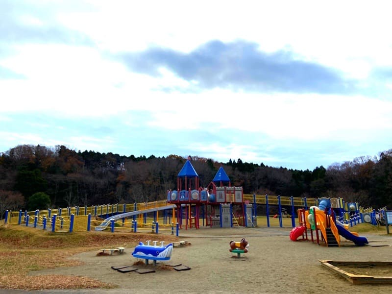 宮城県加瀬沼公園の遊具