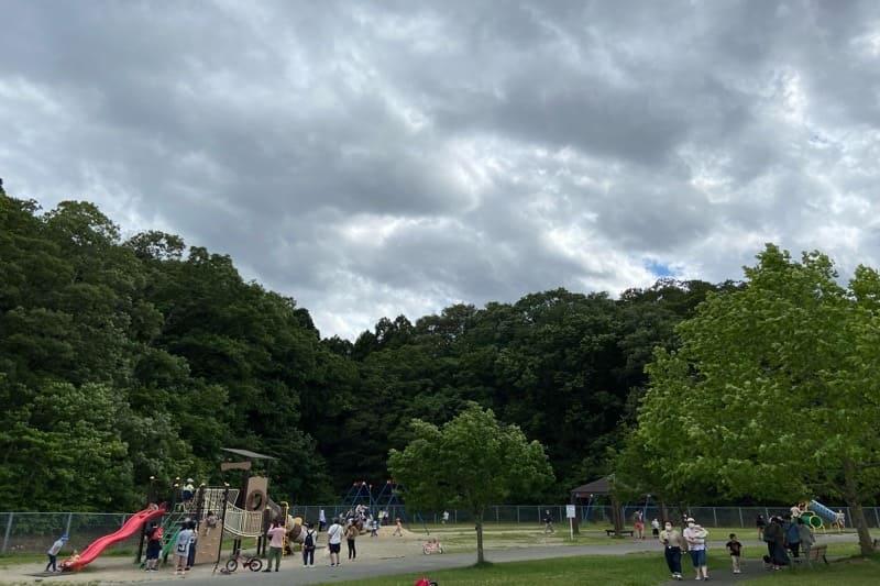宮城県加瀬沼公園の子供用遊具